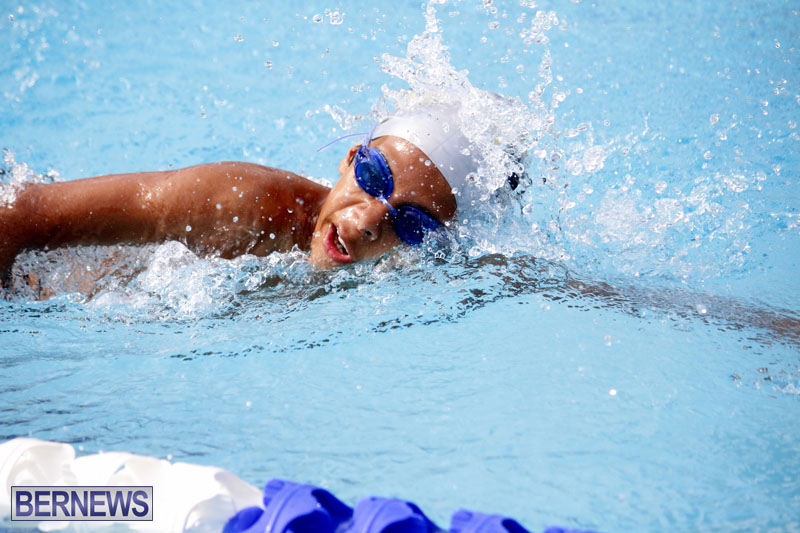 swimming-2015-March-26-15