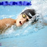 swimming 2015 March 26 (18)