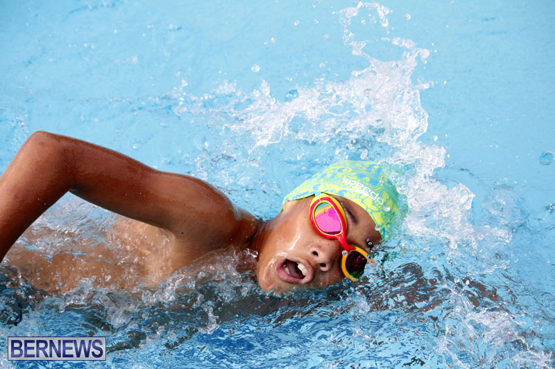 swimming-2015-March-26-19