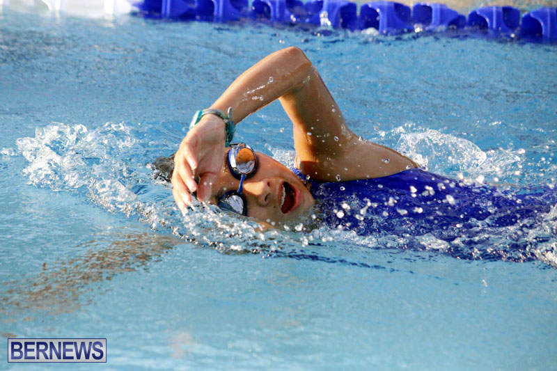 swimming-2015-March-26-2