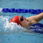 swimming 2015 March 26 (3)