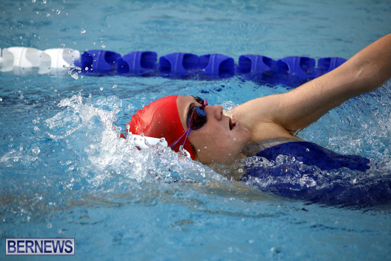 swimming-2015-March-26-3