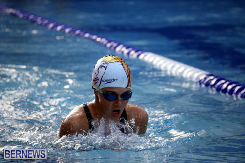 swimming-2015-March-26-6