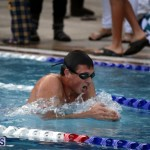 swimming 2015 March 26 (7)