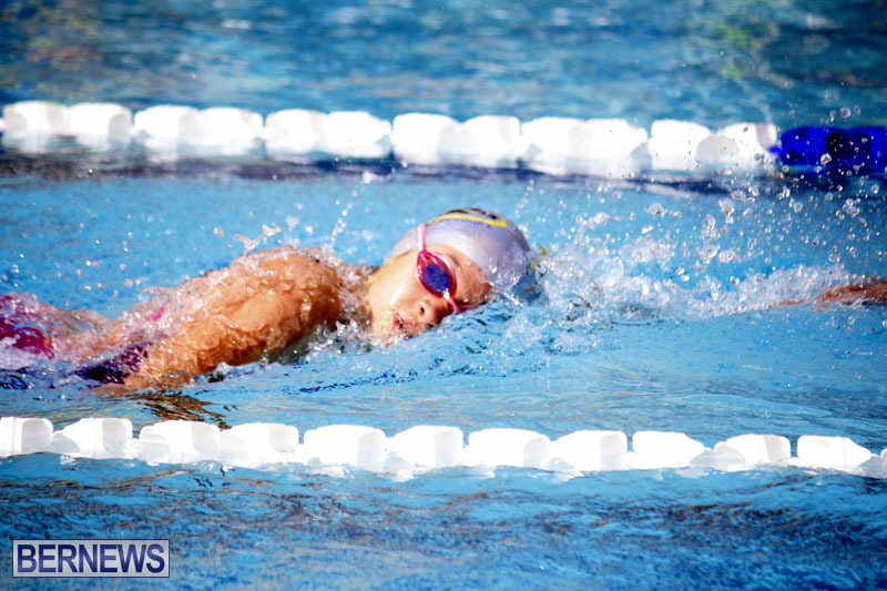 swimming-2015-March-26-9