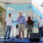 2015 Good Friday Bermuda Kitefest Horseshoe (14)