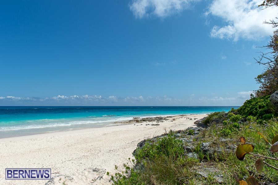 614-Grape Bay Bermuda Generic