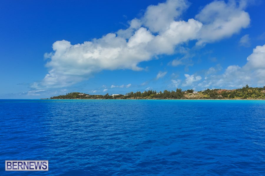 654-North Shore Bermuda Generic