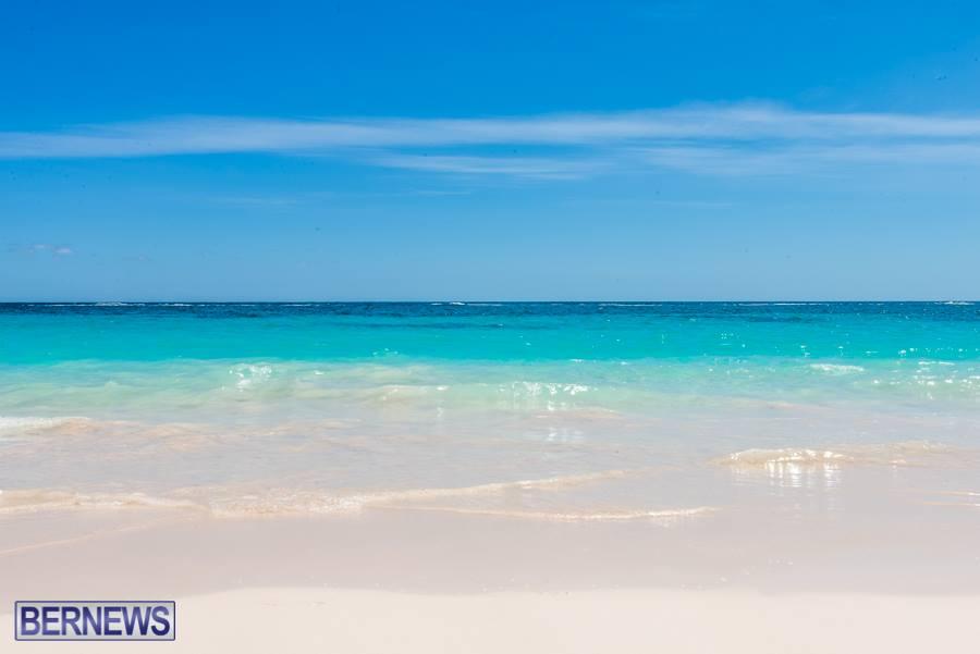 778-Saturday summer Bermuda Generic