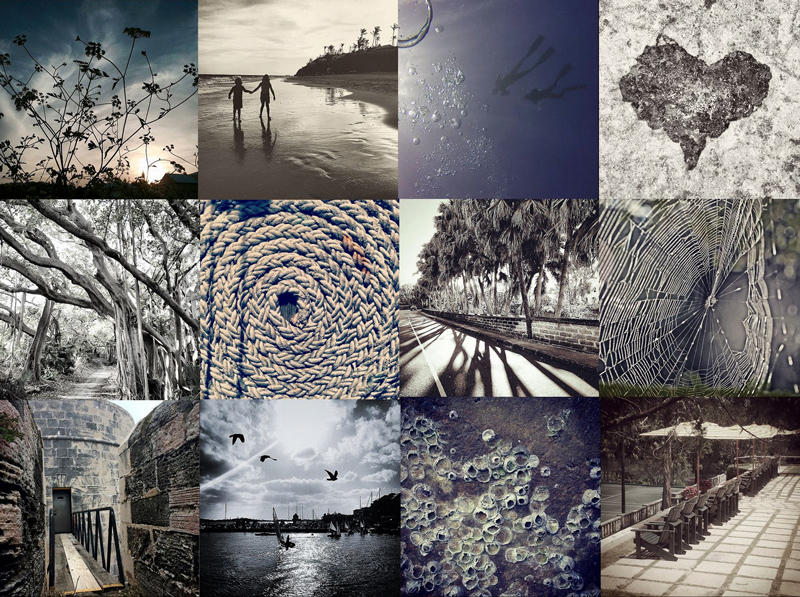 B&W Collage