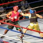 Fight Night XVII Invincible Bermuda, April 18 2015-10