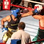 Fight Night XVII Invincible Bermuda, April 18 2015-103