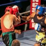 Fight Night XVII Invincible Bermuda, April 18 2015-105
