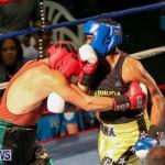 Fight Night XVII Invincible Bermuda, April 18 2015-107