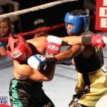 Fight Night XVII Invincible Bermuda, April 18 2015-118