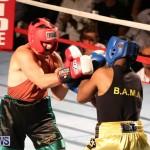 Fight Night XVII Invincible Bermuda, April 18 2015-120