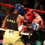 Fight Night XVII Invincible Bermuda, April 18 2015-122