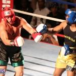 Fight Night XVII Invincible Bermuda, April 18 2015-130