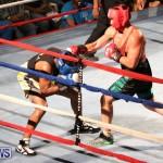 Fight Night XVII Invincible Bermuda, April 18 2015-137
