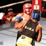 Fight Night XVII Invincible Bermuda, April 18 2015-142