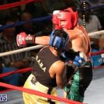 Fight Night XVII Invincible Bermuda, April 18 2015-144