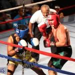 Fight Night XVII Invincible Bermuda, April 18 2015-149