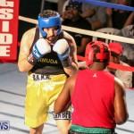 Fight Night XVII Invincible Bermuda, April 18 2015-15