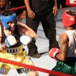 Fight Night XVII Invincible Bermuda, April 18 2015-155