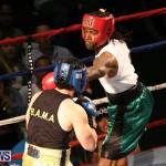 Fight Night XVII Invincible Bermuda, April 18 2015-157