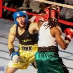 Fight Night XVII Invincible Bermuda, April 18 2015-159