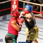 Fight Night XVII Invincible Bermuda, April 18 2015-16
