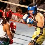 Fight Night XVII Invincible Bermuda, April 18 2015-161