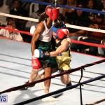 Fight Night XVII Invincible Bermuda, April 18 2015-163