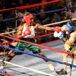 Fight Night XVII Invincible Bermuda, April 18 2015-164