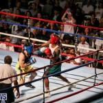 Fight Night XVII Invincible Bermuda, April 18 2015-169