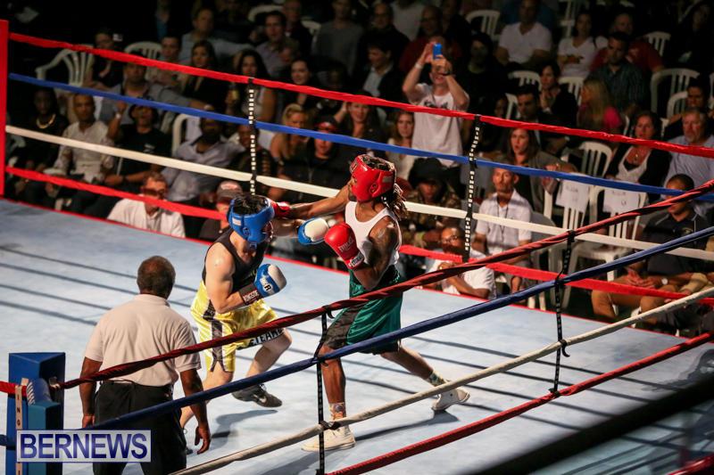 Fight-Night-XVII-Invincible-Bermuda-April-18-2015-169