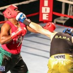Fight Night XVII Invincible Bermuda, April 18 2015-17
