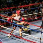 Fight Night XVII Invincible Bermuda, April 18 2015-171