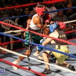 Fight Night XVII Invincible Bermuda, April 18 2015-172