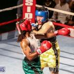 Fight Night XVII Invincible Bermuda, April 18 2015-174