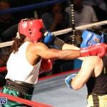 Fight Night XVII Invincible Bermuda, April 18 2015-176