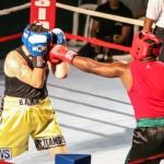 Fight Night XVII Invincible Bermuda, April 18 2015-18