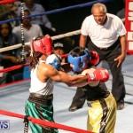 Fight Night XVII Invincible Bermuda, April 18 2015-180