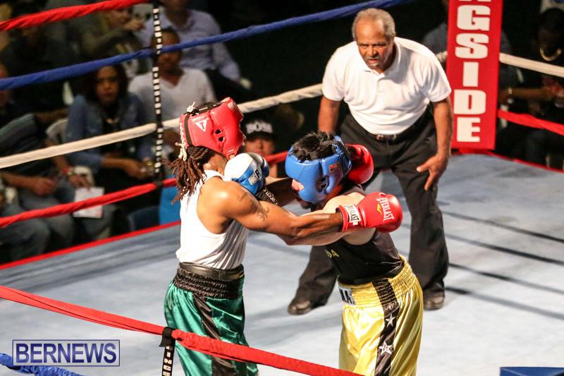 Fight-Night-XVII-Invincible-Bermuda-April-18-2015-180