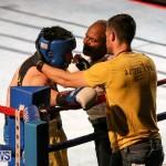 Fight Night XVII Invincible Bermuda, April 18 2015-184
