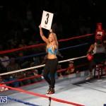 Fight Night XVII Invincible Bermuda, April 18 2015-189