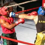 Fight Night XVII Invincible Bermuda, April 18 2015-19