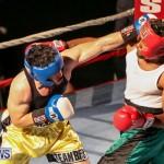 Fight Night XVII Invincible Bermuda, April 18 2015-191
