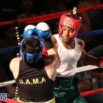 Fight Night XVII Invincible Bermuda, April 18 2015-193