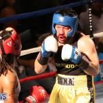 Fight Night XVII Invincible Bermuda, April 18 2015-195
